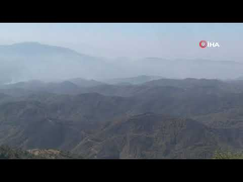 İzmir'in ciğerleri yanmaya devam ediyor