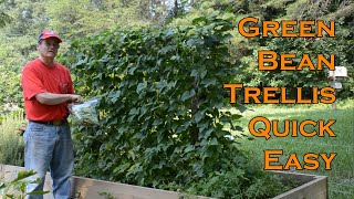 Green Bean Trellis Quick and Easy
