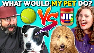 Can People Guess What Their Dog Does? | What Would My Dog Do?