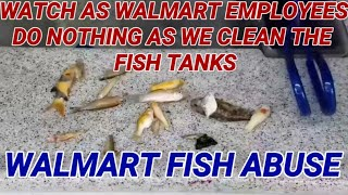 Walmart fish abuse part 1. FISH ABUSE