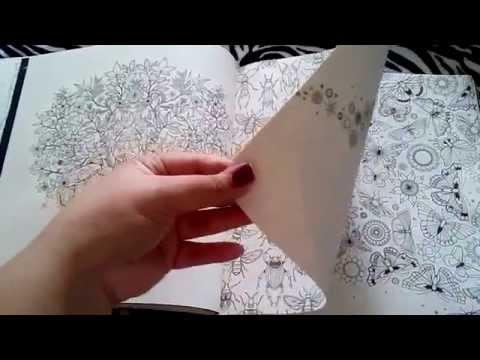 Review Livro Jardim Secreto - desenhos