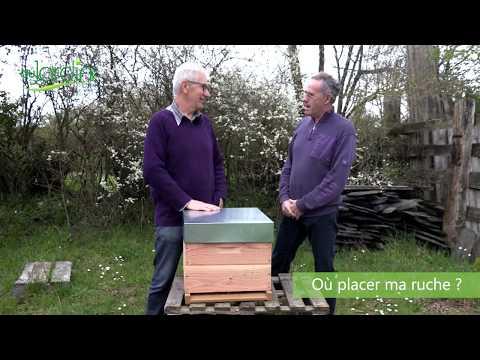 , title : 'Comment débuter sa ruche au jardin ?