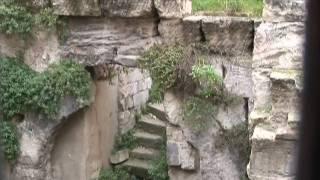 Cultural Cetres - Avignon