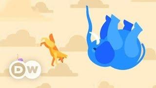 Что будет, если сбросить мышь, собаку и слона с небоскреба? - kurzgesagt на русском