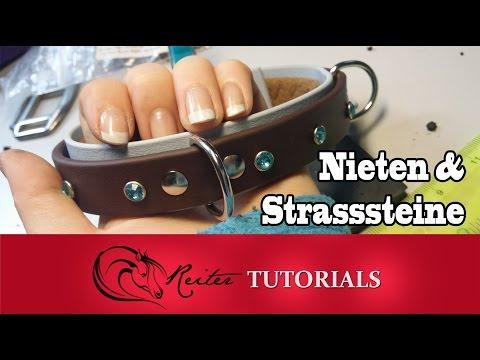 Nieten und Strasssteine befestigen // Reitertutorials