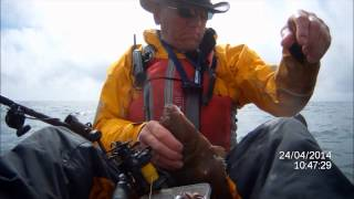 Skerries Bank Plaice Fishing April 2014 Movie And Pics