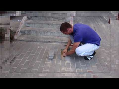 What the Amazing saving a dog underground!