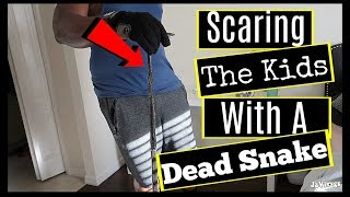 Husband Killed a Snake Then Tried To Scare The Kids With it | Family Vlogs | JaVlogs