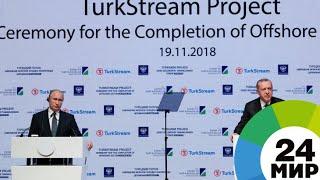 Путин и Эрдоган дали старт завершению морской части «Турецкого потока» - МИР 24