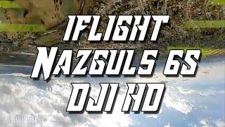 Flying High In The Park! - iFlight Nazgul5 6s DJI HD