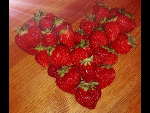Strawberry Alarm Clock *Strawberries Mean Love*