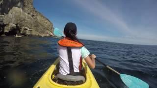 Galapagos Summer 2016 ♡