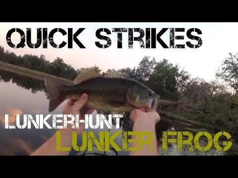 Bass Fishing- Quick Strikes with the Lunkerhunt Lunker Frog (2013)