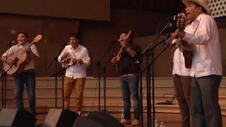 Chicago Sound - Los Cojolites