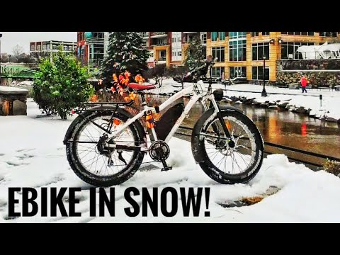 Radrover Electric Fat Tire Bike Review!! 800 Miles Later