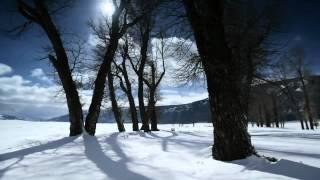 TUYẾT RƠI - Tombe La Neige (SALVATORE ADAMO)