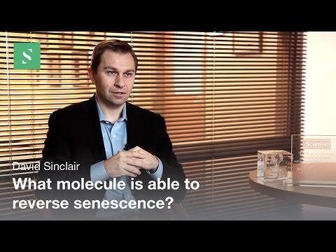 Bain de Saillon suisse proti stárnutí