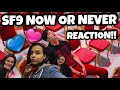 💙TURKISH REACT TO KPOP!! || [MV] SF9 (에스에프나인) _ Now or Never(질렀어) || ENG SUB!💙