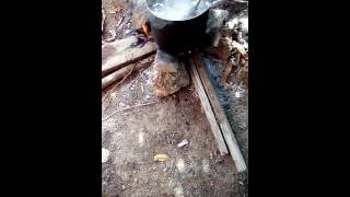 Land Crab Outdoors Cooking