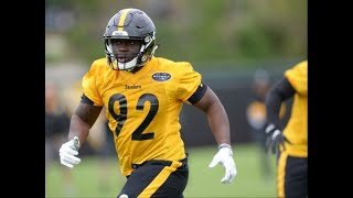 He might not be the next James Harrison, but Steelers' Olasunkanmi Adeniyi looks the part