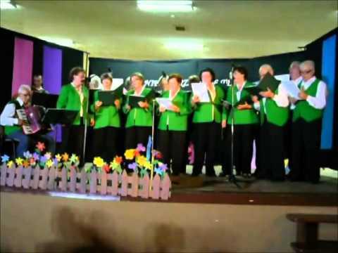 Koncert chóru Discantus z Gowidlina - Gminne Centrum Kultury i Biblioteka w Czarnej Dąbrówce
