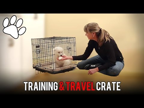 Lucky Dog Training & Travel Crate Assembly and Advice