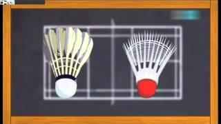 Badminton Nedir? Nasıl Oynanır? Animasyonlu Anlatım :)
