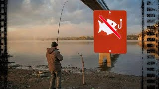 Рыбалка ленты река тавда ноябрь 2020