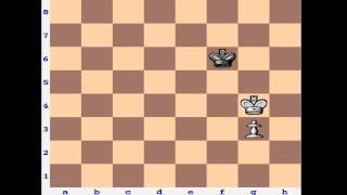 Chess Endgame: Opposition & Pawn Promotion