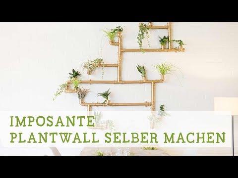Imposante Pflanzenwand selber bauen!