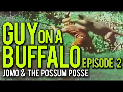 Download Guy On A Buffalo - Episode 2 (Orphans, Cougars ...