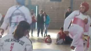 preview picture of video 'taekwondo aimogasta torneo 2014'