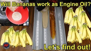 Will Bananas work as Engine Oil? Let's find out!