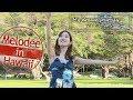 My Dream Journey   Melodee In Hawaii / メロディー ~ハワイでルーツを再発見の旅~