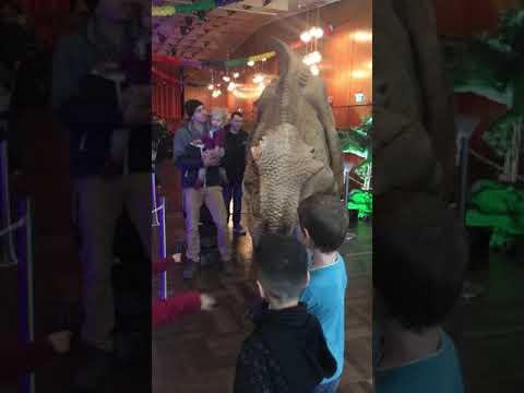 Alilion (Dino-Ausstellung in Oppau , Ludwigshafen am Rhein)