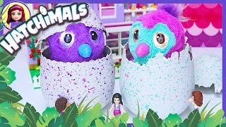 Hatching the Penguala and Draggle Hatchimals Lego Friends Girls Pets Silly Play - Kids Toys
