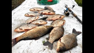 Сунгуль каменск уральский рыбалка 2019