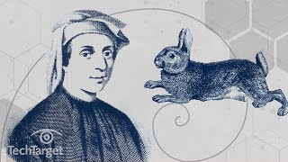 What is the Fibonacci Sequence and Why is it Important?