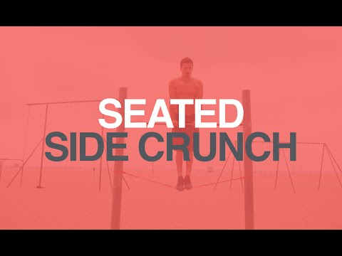 Lever Seated Side Crunch