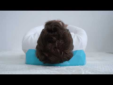 C-Rest Pillow: Effortless Neck Relief Pillow-GadgetAny
