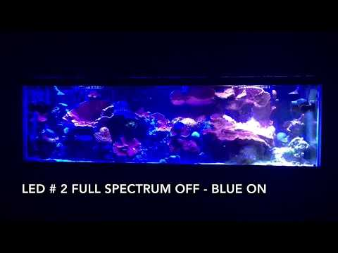 Great Coral Reef Sunrise And Sunset Full Spectrum Led Light Mp3