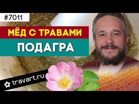 Мёд с травами. Профилактика подагры. ТРАВАРТ #7011 Животворец Андрей Протопопов