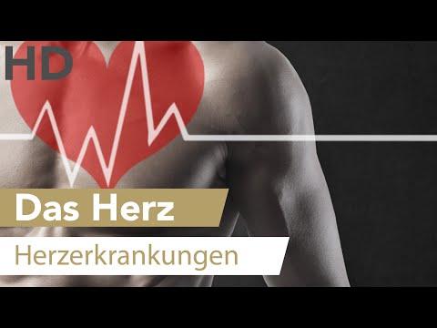 Geschichte der Krankheit in der Inneren Medizin Hypertonie