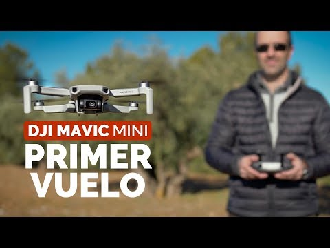 mavic-mini--comparativa-camara-con-mavic-air-y-mavic-2-pro--primer-vuelo