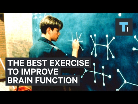 Neuroscientist explains the best exercise to improve brain function