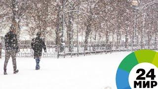 «Я на пятом кусочке жвачки»: восток США «влип» в небывалый снегопад - МИР 24
