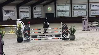 Pepper Pogo - CSIYH1* Lier - 1st 6 Year Old Final
