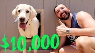 CUSTOM $10,000 DOG HOUSE!!