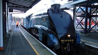 preview picture of video '4464 Bittern at Guildford 19 01 15'