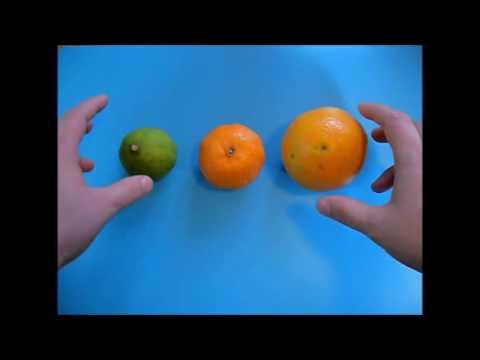 Die Diät der Abmagerung von agapkina